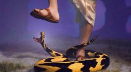 Jesus - stomping